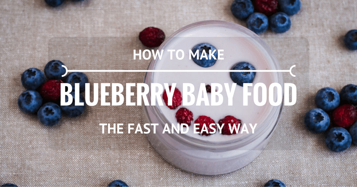 How To Make Blueberry Baby Food The Fast And Easy Way