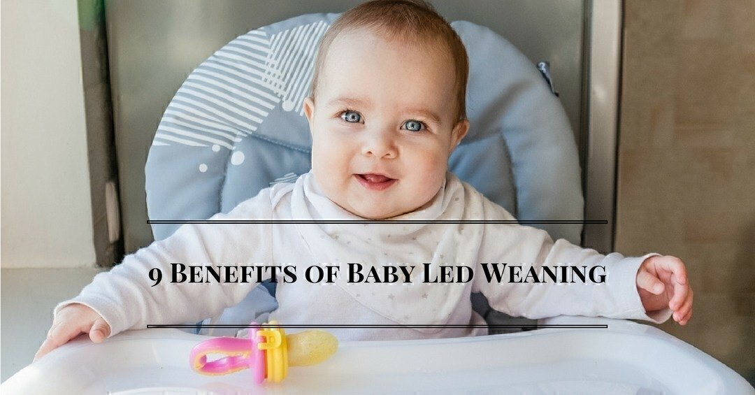 9 Benefits of Baby Led Weaning